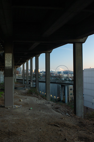 Under the Viaduct, 2019