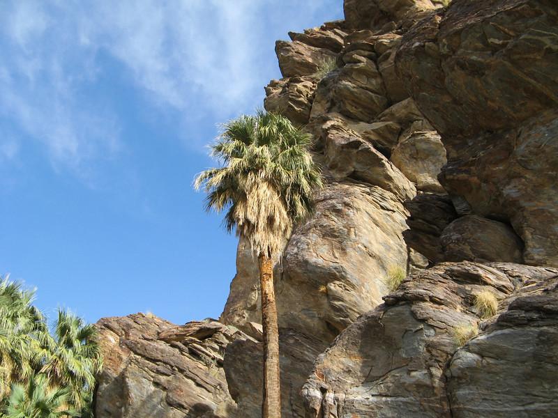 Palm Springs 008-1.jpg
