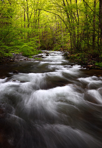 Spring Rush II - Oconaluftee River (Great Smoky Mountains National Park)