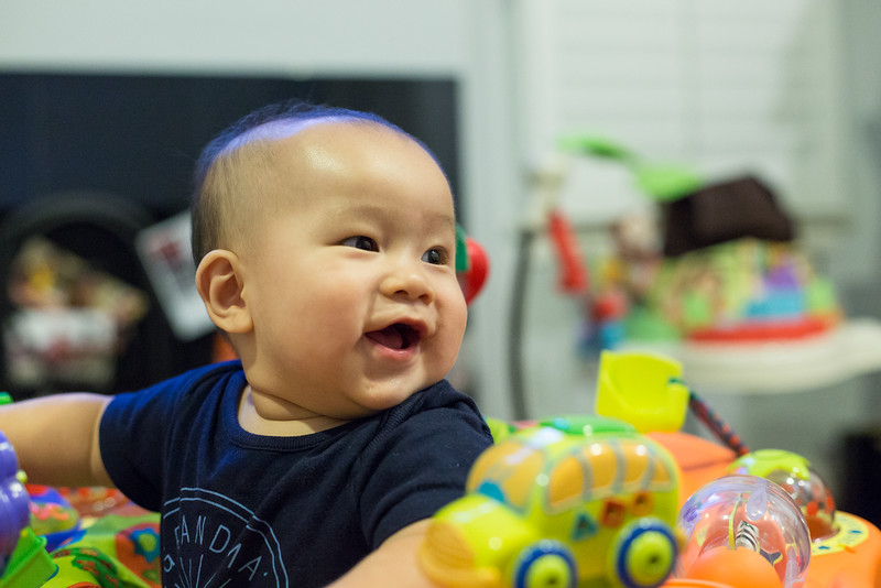 oliver_playing_20150805-15.jpg