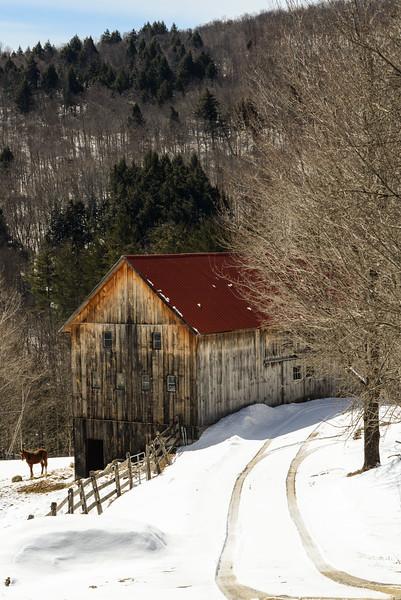 Freddie's Barn Winter - 1