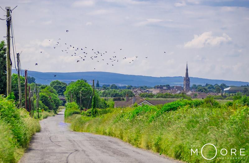 Tullamore From Tinnycross.jpg