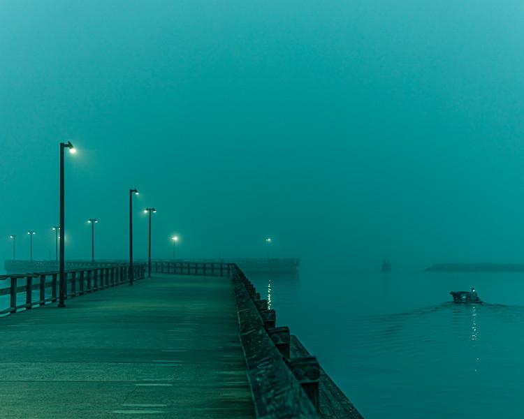 """Fog Dog"""
