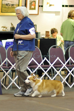 2011 PWCCA Obedience Trial