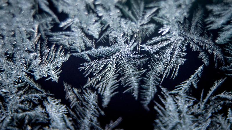frost nov 2018-9166.jpg