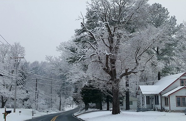 Snow January 30, 2017