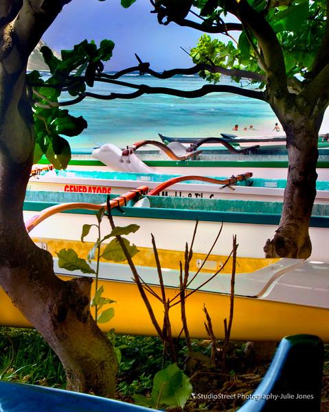 canoes and ocean.jpg