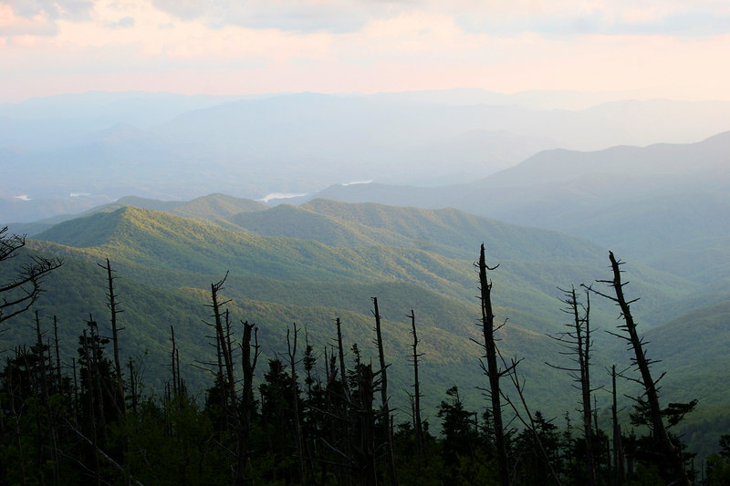 Late afternoon sun looking southeast from Clingman's Dome.