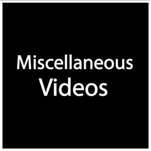 YY Videos