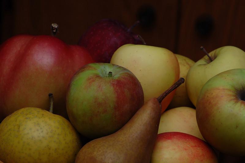 fruit rt.jpg
