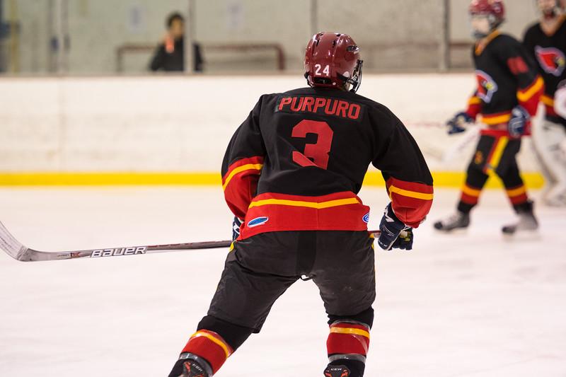 20180202 BI Hockey 020.jpg