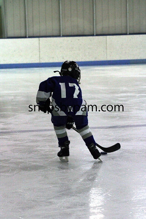 Virginia Youth Hockey Tourney 2011