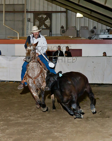 2013 Appaloosa & Open Horse Show Friday June 14th.