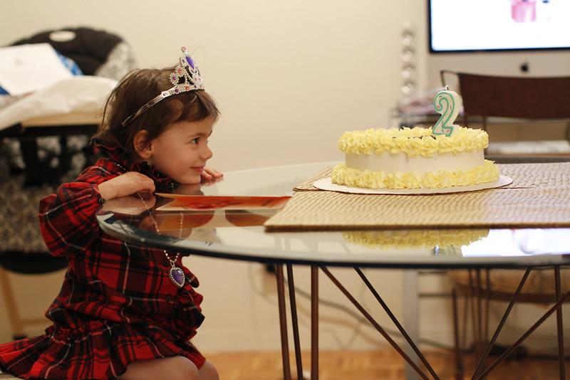 _MG_1916 Lila's 2nd Birthday.JPG