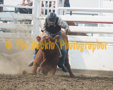 DLB 2017 Bull and Steer Riding