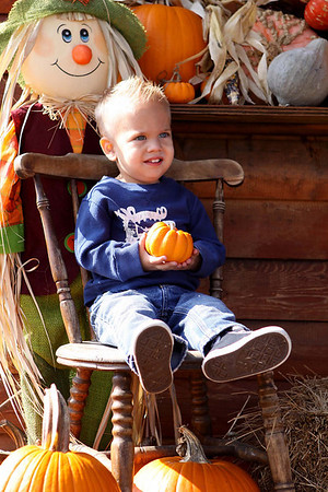 Dylan at the Pumpkin Patch