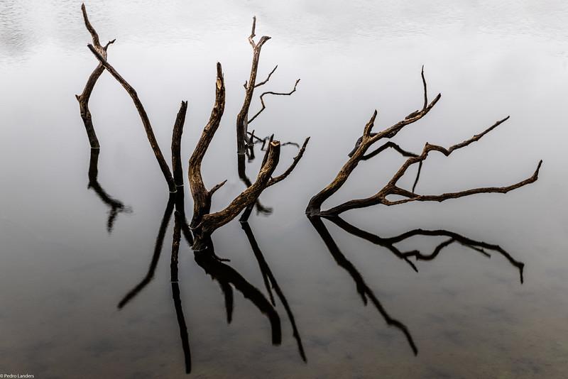 Low Water at Colliford Lake