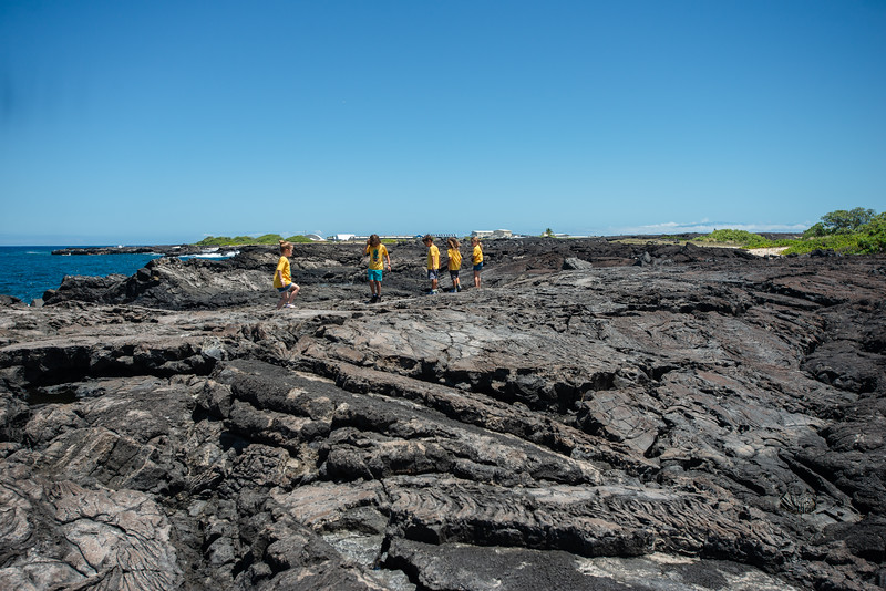 Hawaii2019-568.jpg
