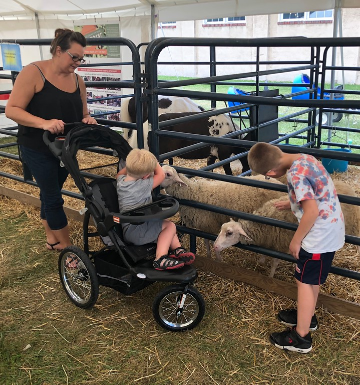 . Tawana Roberts � The News-Herald <br> Families enjoy petting animals at the Lake Metroparks exhibit at the 2018 Lake County Fair on July 26.