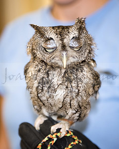 Blue Ridge Wildlife Center 7-17-18