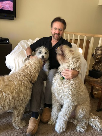 Me & the Dogs