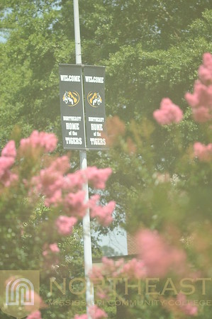 2013-07-12 CAMPUS New Boulevard Banners