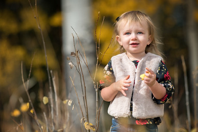 Kelley Family - PREVIEW GALLERY