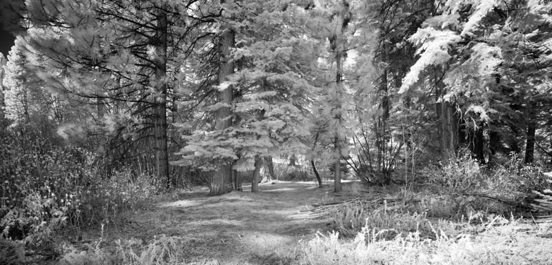 tahoe_568.jpg