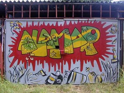 GRAFFITI OMNI (1).jpg