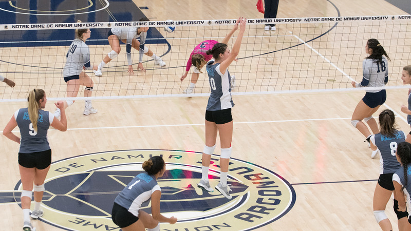 HPU Volleyball-92722.jpg