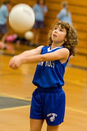 Volleyball  & Basketball 2006