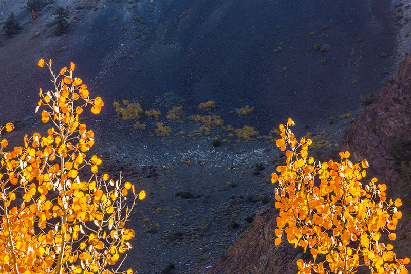 Bishop Canyon Slopes.jpg