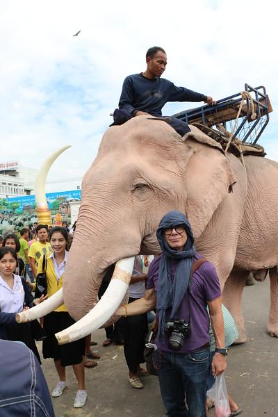 2014-11-14 Surin Elephant Welcome Feast 635.JPG