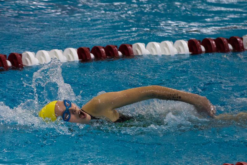 swimming-110109-347.jpg