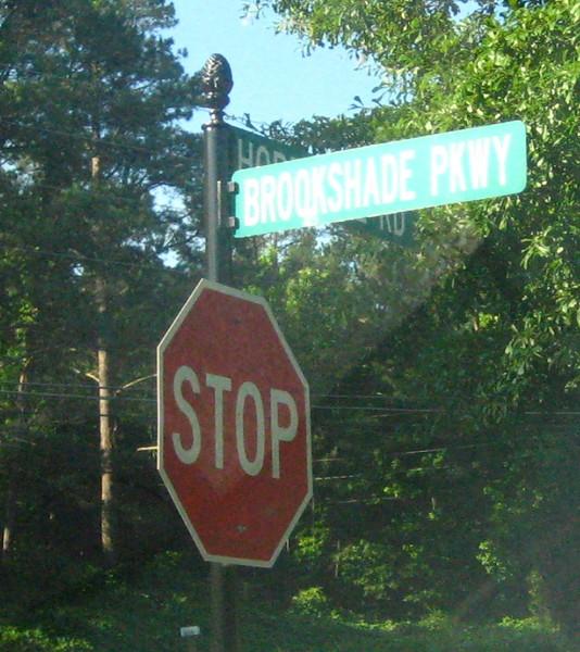 Brookshade Community Of Homes Milton GA (3).JPG