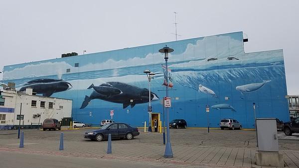 2018 Anchorage, Alaska + roadtrip