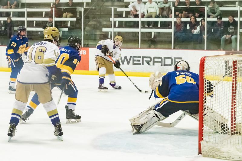 Div1 Hockey v DV--_MG_5503.jpg