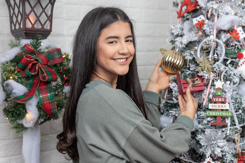 12.18.19 - Vanessa's Christmas Photo Session 2019 - 34.jpg