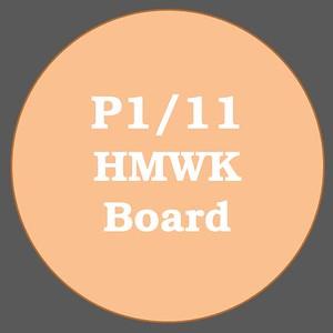 P1/11 HMWK