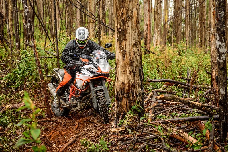 2019 KTM Australia Adventure Rallye (227).jpg
