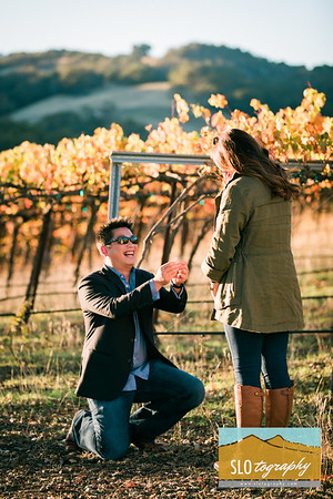 Jenna+Eric ~ HammerSky Engagement!