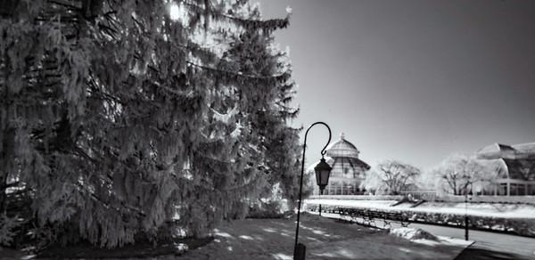 New York Botantical Gardens