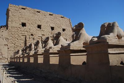 Karnak Temple complex,Luxor 2008.
