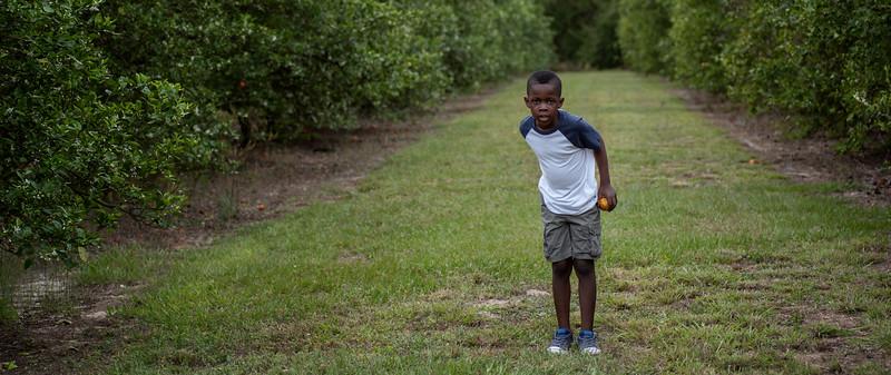 Jayden in orange grove 3.2019 III cropped wide.jpg