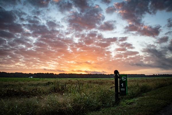 Mile 1 Sunrises