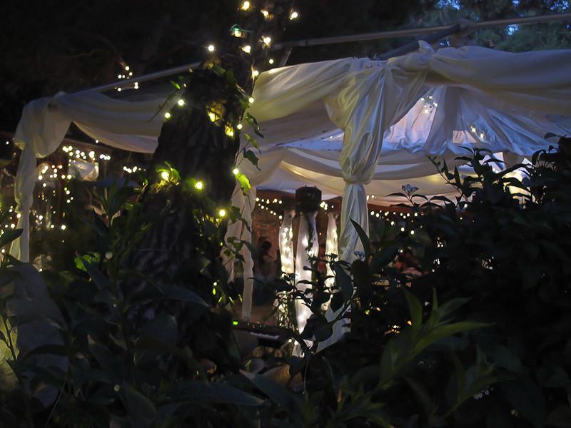 sep25_wedding.jpg