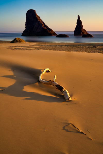 Bandon Beach, Driftwood and Wizard's Hat at Sunset