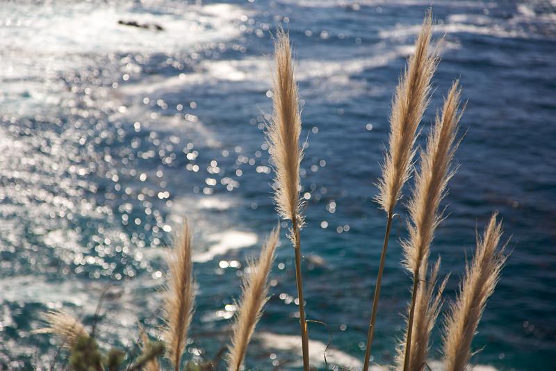 2009-01-27 at 11-34-55 - IMG_2465.jpg