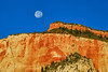 Zion National Park Landscapes :