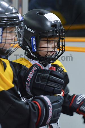 2012-13 EY Hockey School